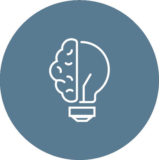 What we do_brain-bulb icon